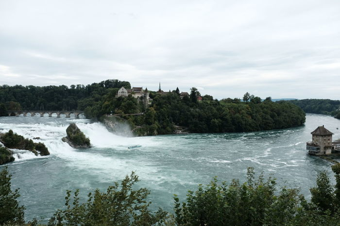 Please again my friends! 1, 2, 3 or 4? (later there is a final with the best four pictures you have chosen) Thank you :-)) 3.〰 From My Point Of View Jacklycat®2017 Lost In The Landscape Nature Rheinfall The Week On EyeEm From Where I Stand Landscape River Tree Water Waterfall 🇨🇭 Switzerland