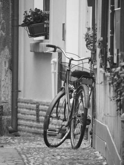 Bicicle Bicicleta Bike Bike Ride Bikelife Bikes Biketour Black & White Black And White Black And White Photography Black&white Blackandwhite Blackandwhite Photography Blackandwhitephotography Ferrara Ferrara- Italy FerraraCity Oldbicycle Oldbike Oldbikes Oldtime Parking Parking Area Streetphotography Vintage