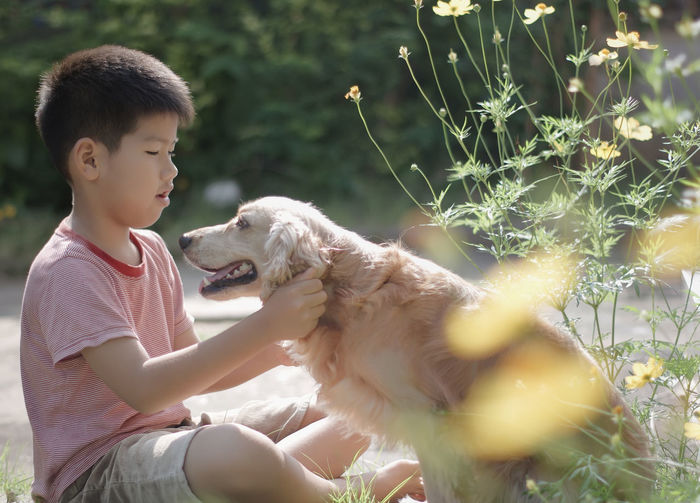 Boy playing with dog in meadow