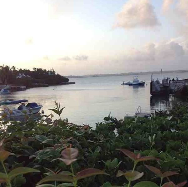 Bermuda Morning Nofilter