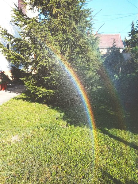Spraying Water Tree Sky Beauty In Nature Outdoors Day Nature House City Sunset Sun Summer Rainbow🌈 Rainbow