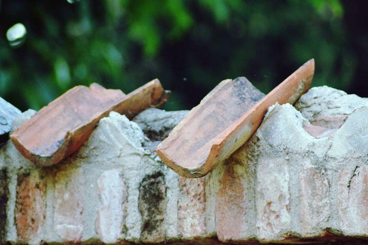 Mattoni Bricks Home Ungiorno💕