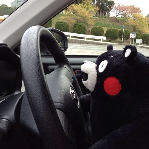 Driving Smile Holiday