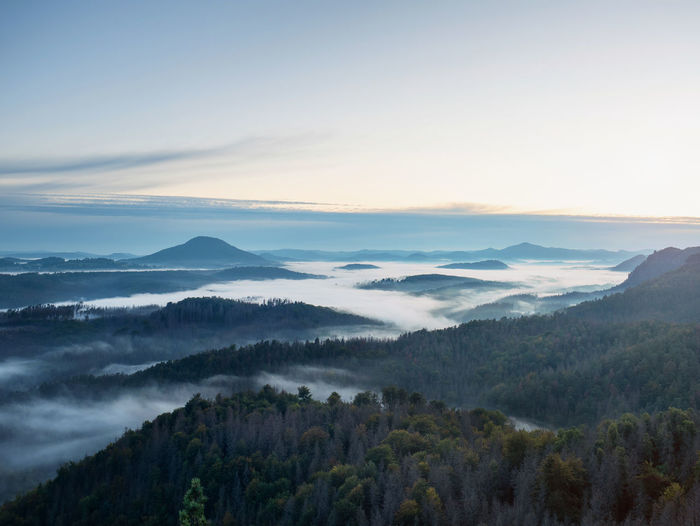 Beautiful sunny morning panorama of forest covered by misty clouds. autumn fog on the mountain hills