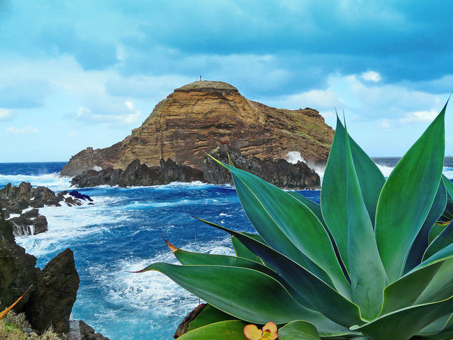 Ponta Delgada, Flores Island, Azores Beauty In Nature Cloud - Sky Day Leaf Mountain Nature No People Outdoors Rugged Coastline Scenics Sea Sky Tranquil Scene Tranquility Water