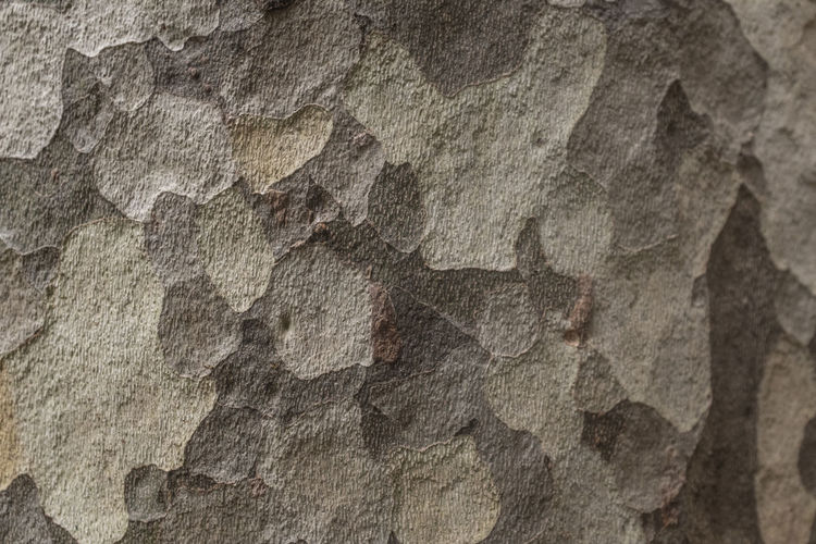 No People Close-up Solid Rock Rock - Object Rough Wall - Building Feature Architecture Day History Pattern Outdoors Textured  Backgrounds Full Frame Ancient Nature Art And Craft Built Structure Textured Effect Sandstone