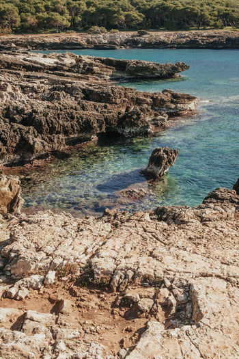 Animal Themes Beach Beauty In Nature Betterlandscapes Day High Angle View Italy Nature No People Outdoors Porto Selvaggio Puglia Salento Scenics Sea Sunlight Tourism Travel Travel Destinations Water