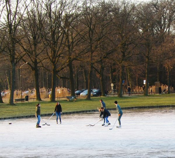 Fun On The Ice Ice Hockey Winter Sport Fast Sport Frozen Lake Leisure Activity Winter Cold Temperature Outdoors Grass Trees Reeds Bare Trees Ice Lake Park