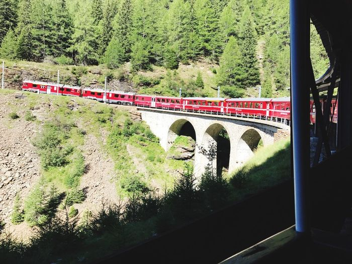 Transportation No People Plant Nature Window Day Train Mode Of Transportation Outdoors Train - Vehicle