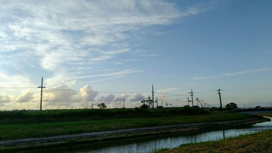 Summer2018🌴 Evening_time Evening_sky Japan🇯🇵 Nature Botany いつもそばにある癒し Eveningscenery Outdoors Eveningskyview Power_in_nature Scenics Wildlife Japan Scenery EyeEmNewHere Beauty In Nature Landscape_Collection EyeEm Best Shots EyeEm Nature Lover Cable Telephone Line Rural Scene Sky Tranquility Growing Countryside Tranquil Scene Greenery Green Non-urban Scene