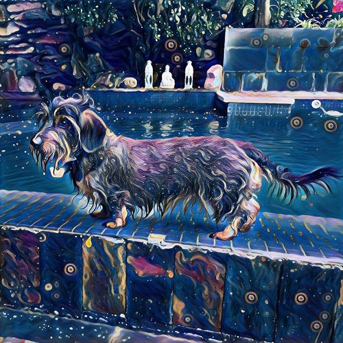 DogVG Cellularphotography Van Gough Digital Manipulation Dauchshund Animal Animal Themes One Animal Mammal Pets Domestic Domestic Animals