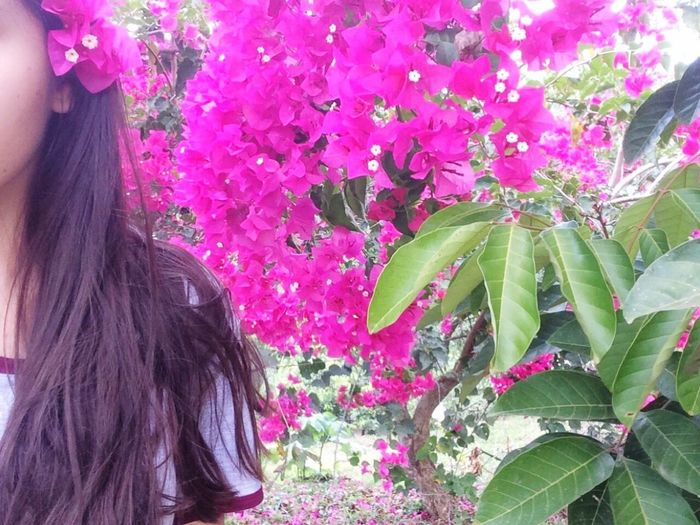🌸 Flower Growth Nature Pink Color Purple Tree Plant Fragility Freshness Beauty In Nature Outdoors Women One Person Bougainvillea Lilac Close-up Day People