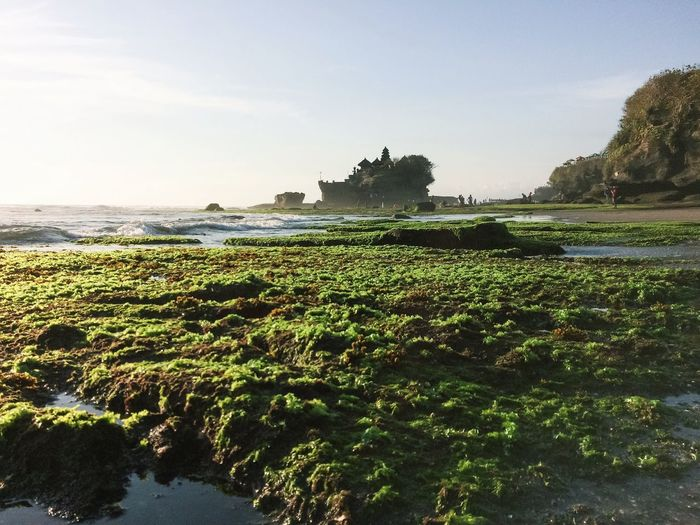 Beauty In Nature Calm Day Distant Enjoying The Sights Idyllic Nature Non-urban Scene Outdoors Relaxing Moments Remote Rippled Scenics Sea Sightseeing Tanah Lot Temple Tourist Attraction  Tranquil Scene Tranquility Traveling Tropical Climate Water Waterfront Showcase: January