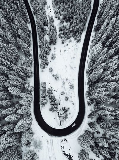 High Angle View Of Road By Snow Covered Trees