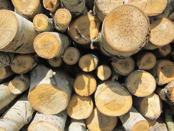 Firewood Timber Woodpile Lumber Industry Deforestation Forestry Industry Large Group Of Objects Been There.