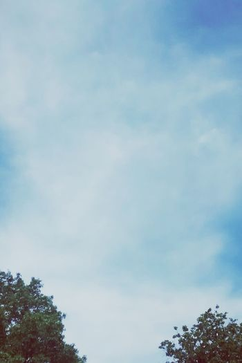 Sky EyeEm Nature Lover
