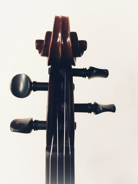 violin scroll with tuning pegs Strings Classical Music Violin Pegs Violin Scroll Violin No People Low Angle View Metal Close-up Built Structure Musical Instrument Music Arts Culture And Entertainment Studio Shot Wood - Material String Instrument Copy Space Indoors