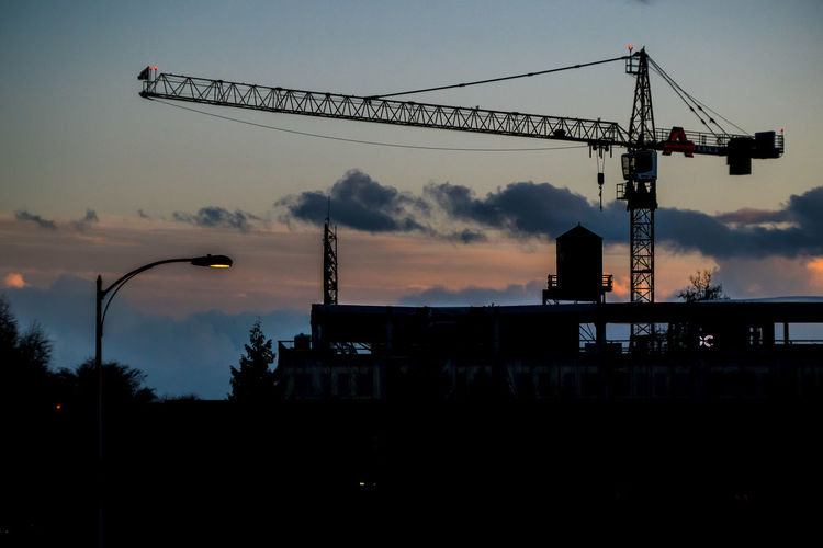 Silhouette of cranes at dusk