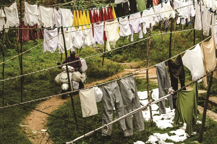 Dhobi Ghat Bangalore Dhobie Ghat Lines Pattern, Texture, Shape And Form Scooter Animal Themes Bike Clothesline Clothespin Day Dhobi Dog Domestic Animals Drying Full Length Hanging Laundry Mammal Nature No People One Animal Outdoors Pattern Pets Rope The Street Photographer - 2018 EyeEm Awards