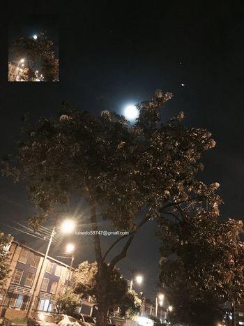 Luna coqueta