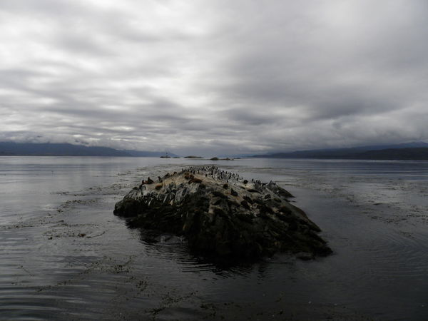 Ushuaia Argentina Majestic Tranquility Calm Beuty Of Nature Water Naturelovers Beauty In Nature