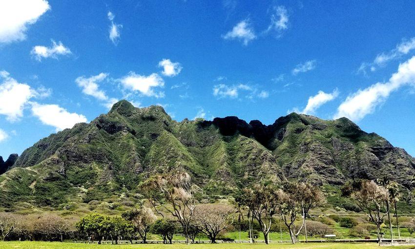 Kualoa Ranch Kualoabeachpark Chinaman's Hat Hawaii Hawaii Life Luckywelivehawaii Kamehameha Beauty In Nature Tree Mountain Blue Sky Cloud - Sky Green Color Mountain Range