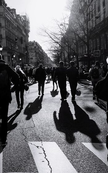Sunlight, Shades And Shadows People Streetphotography Blackandwhite Photography Shadows Silhouettes City Crowd Tree Sunlight Street City Street Sky