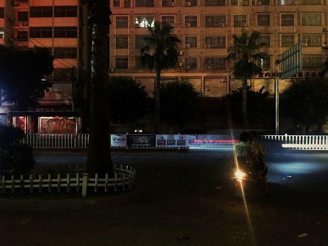 Night Car Tree