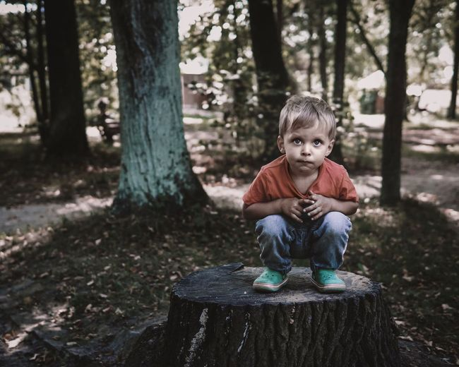 Full length of boy crouching on tree stump in forest