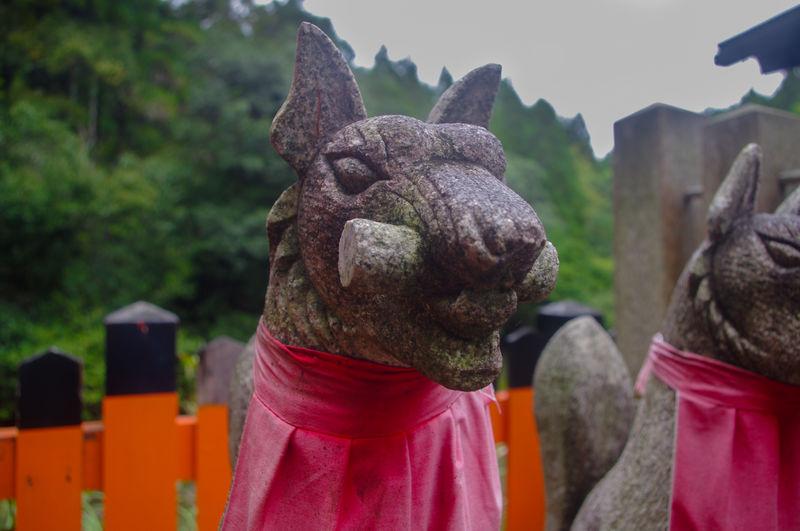 Japan Kitsune Shrine Statue Close-up Focus On Foreground Fushimi Inari Shrine Outdoors Sculpture Shinto