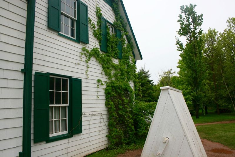 Anne Of Green Gables Architecture Building Exterior Built Structure Cavendish Close-up Day Grass Green Green Color Green Gables Growth Nature No People Outdoors Plant Sky Tree