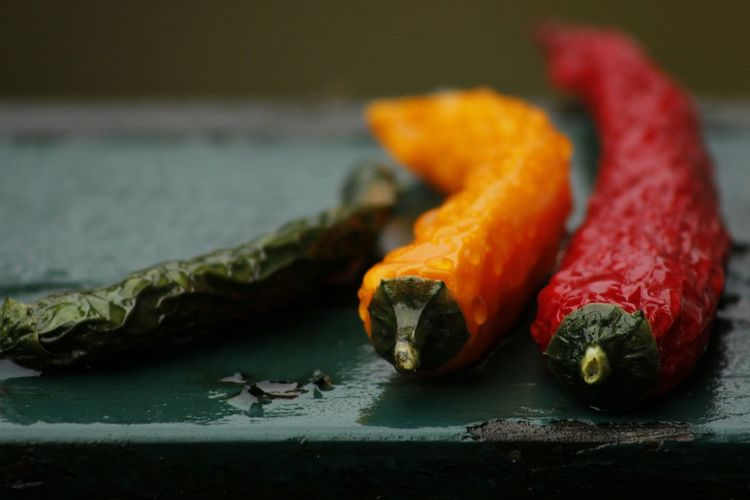Chili Pepper Red Green Yellow Fresh Freshness Dried Chillies Waterdrops Healthy Food Healthy Outdoors Natural Light Transcience Comparison Contrast Food Photography Negative Space Bokeh Bokehlicious Wet Old