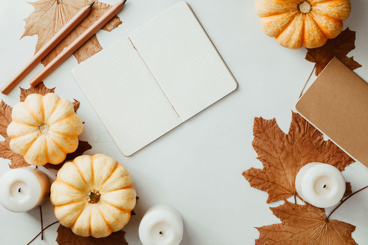 Autumn flat lay with small pumpkins, fall maple leaves and blank paper notebook on a white background. The concept of september and school, mockup Autumn Top View Flat Lay September October November Maple Note Notebook Empty Blank White Above School Pumpkin Candle Concept Cozy Winter Mockup Fall Back Background Education Mock Desk Table Design Pencil Template Colorful Copy Space Still Life High Angle View