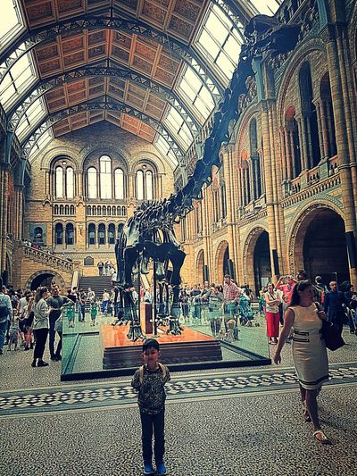 DinosaursAroundTheWorld Architecture Indoors  Built Structure Person History Travel Destinations Nature Scenics Holidays Life Fun Arch Day Beauty In Nature Creativity Animals In The Wild