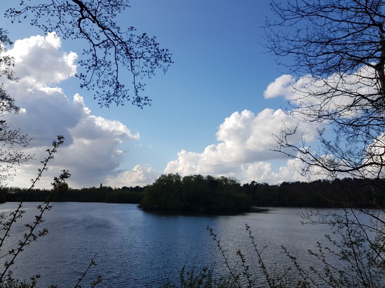 tree, nature, sky, beauty in nature, lake, tranquility, cloud - sky, no people, water, scenics, branch, outdoors, tranquil scene, day