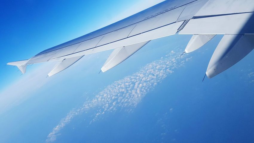 Transportation AirPlane ✈ Airplane Taking Photos Hello World Enjoying Life Clouds And Sky Blue Sky Best View Without Filters Back To Home From My Point Of View EyeEm Best Edits Capture The Moment Travel Blue Popular Blue Wave Quiet Moments Nature's Diversities Feel The Journey