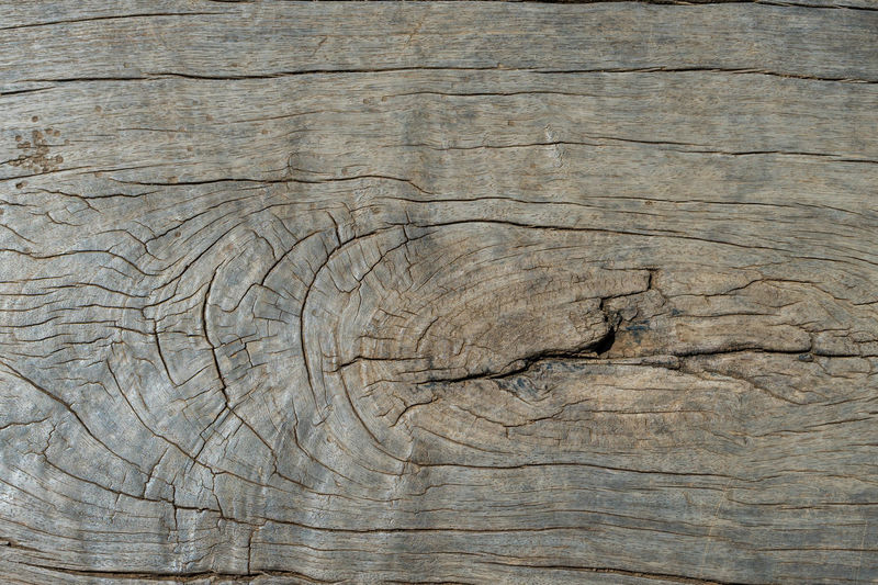 Antique Backgrounds Branch Brown Close-up Colored Background Construction Frame Cracked Hardwood Knotted Wood Lumber Industry Nature No People Pattern Plank Rough Textured  Timber Tree Tree Ring Tree Trunk Weathered Wood - Material Wood Grain Wood Paneling