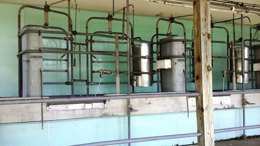 Industry No People Milkingstation Milking Time Milking Cows Farm Equipment Dairy Farm