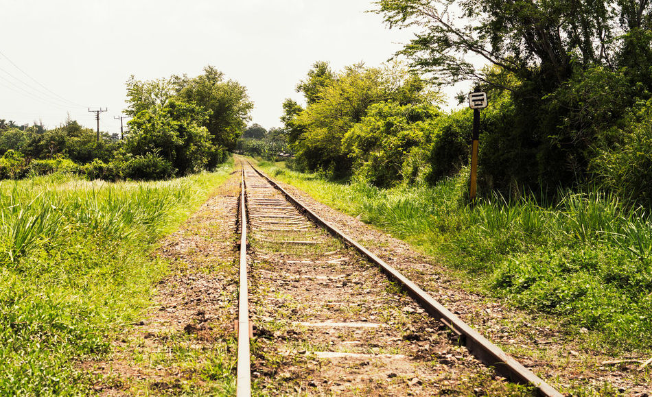 Railroad tracks in Cuba, 2017. Cuba Rural Travel Beauty In Nature Clear Sky Converging Day Grass Growth Landscape Nature No People Outdoors Rail Transportation Railroad Railroad Track Railroad Tracks Runaway Scenics Sky The Way Forward Tranquil Scene Tranquility Transportation EyeEmNewHere
