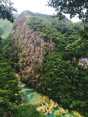 Guatemala Semuc Champey Nature Nature Photography Naturelovers Landscape Beauty In Nature Beautiful Places Around The World Landscapes