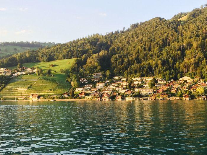 游船时刚好日落中 看见了黄昏下的瑞士 Thun Lake, Switzerland. Photography Traveling Color Photography Beautiful Light And Shadow Lake View View Travel Holiday Water Reflections An Eye For Travel