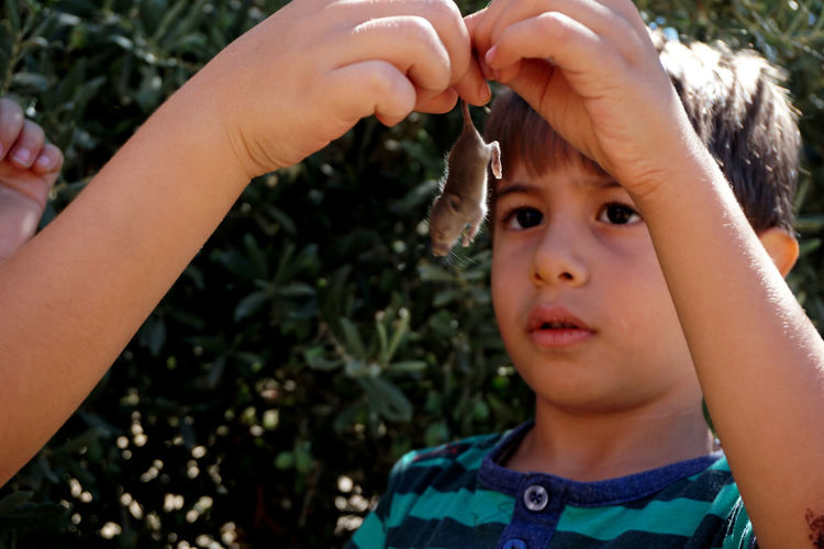 Close-up of boy holding mouse