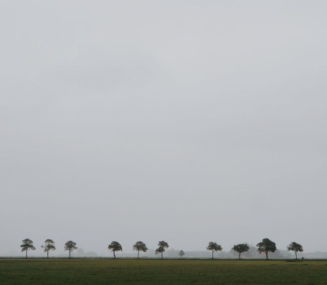 Friesland 10 Nature Photography Beauty In Nature Copy Space Environment Field Land Landscape Minimal Minimalism Minimalobsession Nature Nature_collection No People Outdoors Plant Sky The Great Outdoors - 2018 EyeEm Awards