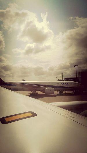 787 flights