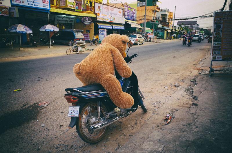City Street Land Vehicle Motorcycle Sitting Street Street Photography Ted Teddy Bear The City Light The Street Photographer - 2017 EyeEm Awards