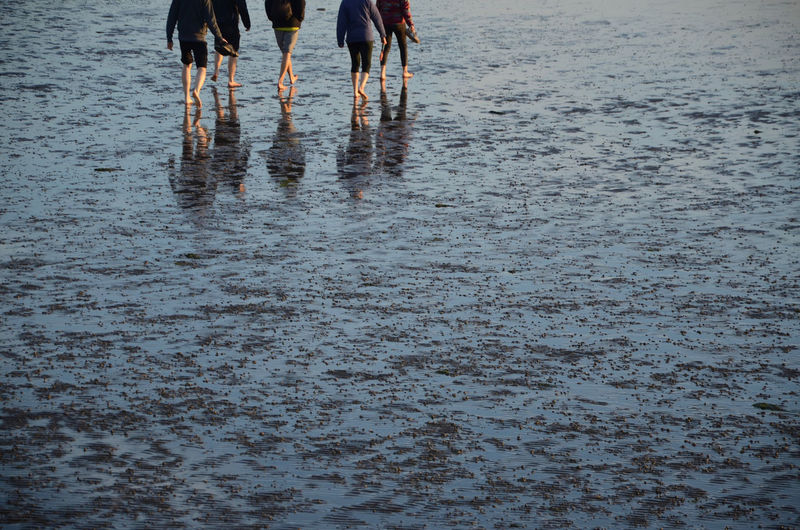 Low section of people standing on wet beach