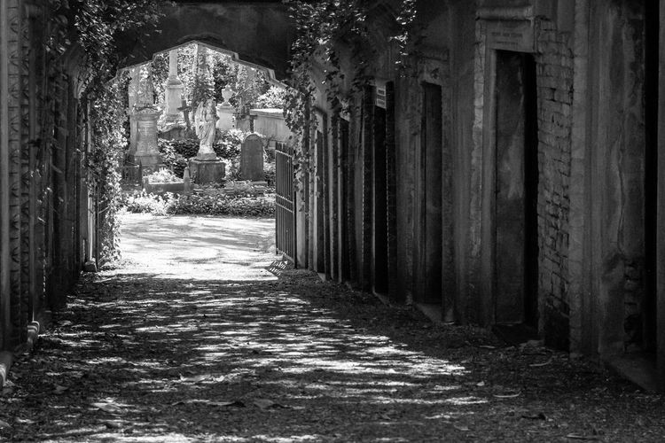 Architecture Built Structure Direction Building The Way Forward Arch No People Building Exterior The Past Day History Empty Arcade Religion Corridor Footpath Nature Entrance Outdoors Architectural Column Alley Colonnade Long Blackandwhite Gravestone Cross Angel