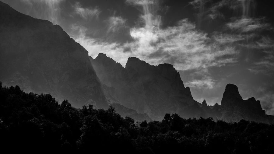 Beauty In Nature Day Forest Landscape Mountain Nature No People Outdoors Picos De Europa Scenics Sky Tree