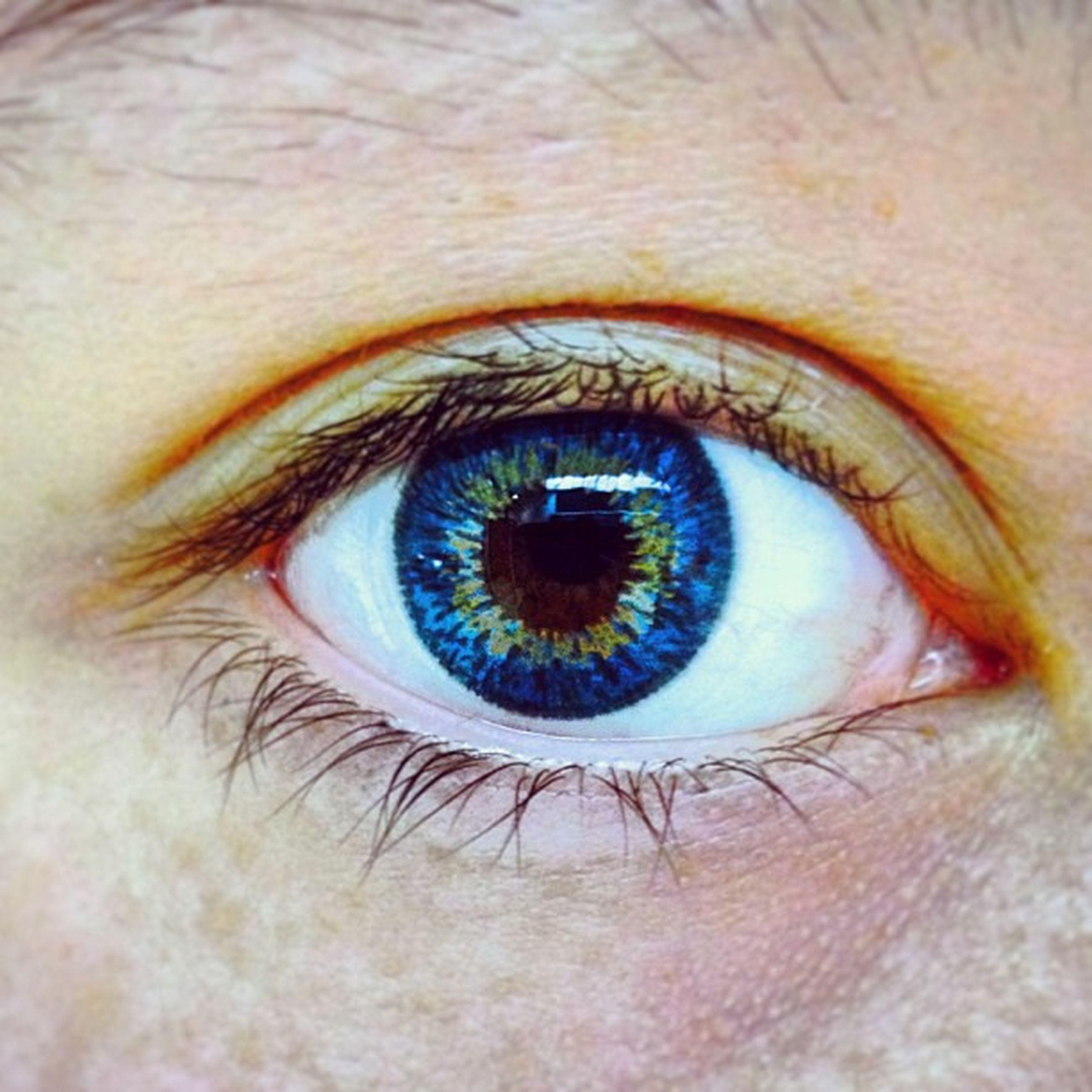 human eye, eyelash, eyesight, close-up, sensory perception, extreme close-up, iris - eye, eyeball, looking at camera, full frame, portrait, part of, extreme close up, human skin, eyebrow, vision, backgrounds