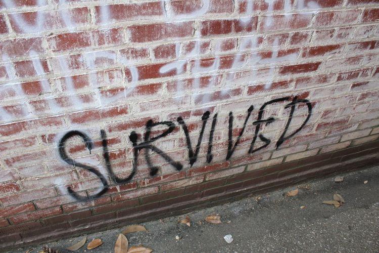 Survived! Survivor Graffiti Letters Word Spray Paint Back Alley Back Alleys Alleyway Rogers, Arkansas